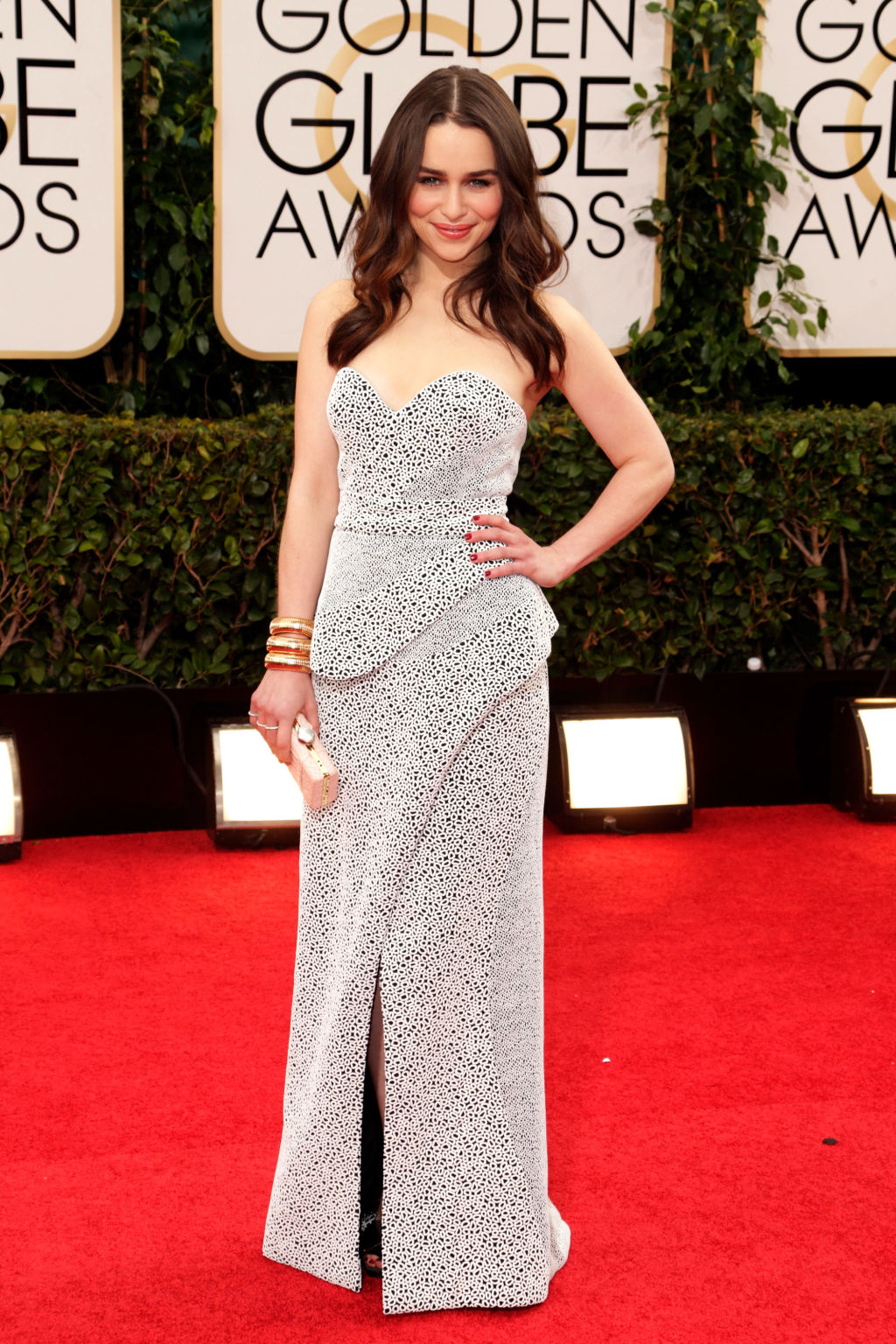 Golden globes red carpet 2014 pictures from 2014 golden globes red carpet - Golden globes red carpet ...