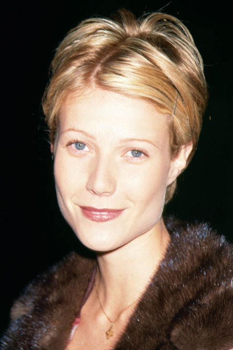 gwyneth paltrow hairstyles sliding - photo #24